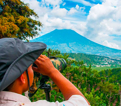 Birdwatching-tour-Observacion-de-Aves-things-to-do-in-Antigua-Guatemala-Tours Around-Antigua-Guatemala-V7