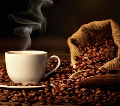 Coffee-tour-tour-de-cafe-finca-filadelfia-resort-coffee-plantation-antigua-guatemala-around-antigua-guatemala-guatemala-city-v8
