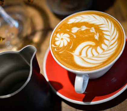 Coffee-tour-tour-de-cafe-finca-filadelfia-resort-coffee-plantation-antigua-guatemala-around-antigua-guatemala-guatemala-city-v9