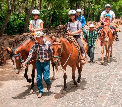 tour-de-mulitas-en-antigua-guatemala-mule-ride-tour-in-antigua-guatemala-around-antigua-guatemala-v2