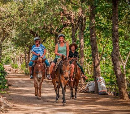 tour-de-mulitas-en-antigua-guatemala-mule-ride-tour-in-antigua-guatemala-around-antigua-guatemala-v3