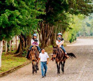 tour-de-mulitas-en-antigua-guatemala-mule-ride-tour-in-antigua-guatemala-around-antigua-guatemala-v4