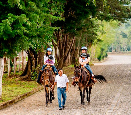 tour-de-mulitas-en-antigua-guatemala-mule-ride-tour-in-antigua-guatemala-around-antigua-guatemala-v4