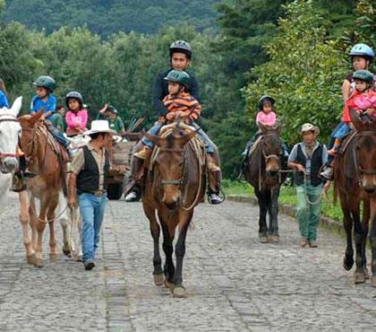 tour-de-mulitas-en-antigua-guatemala-mule-ride-tour-in-antigua-guatemala-around-antigua-guatemala