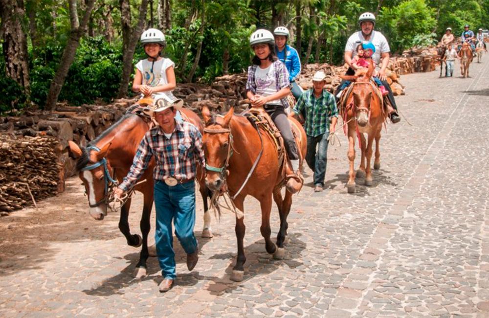 Things-to-do-in-Antigua-Guatemala-Actividades-en-Antigua-Guatemala-Around-Antigua-Guatemala-Mule-ride-tour-Finca-filadelfia